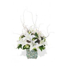 White Oriental Lily Arrangement